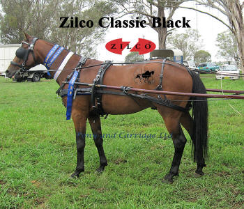 Zilco Classic Single Harness Set With Standard Collar And Fixed Backband