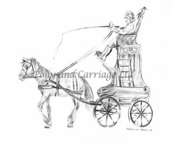 Horse carriage size how to buy the correct sized horse carriage horse carriage poor quality horse carriage too high ccuart Choice Image