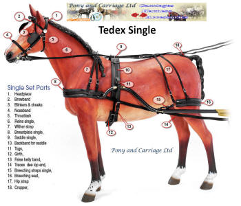 Zilco Driving Harness Tedex Browband