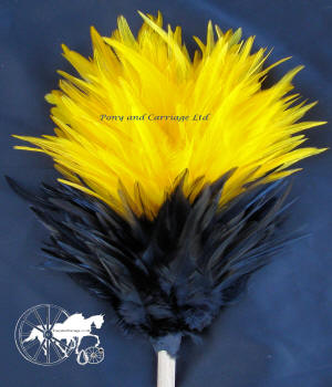 Black and Yellow Feather Plume