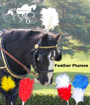 Coloured Feather Plumes For Horses Etc