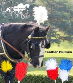 Egret Feather Carriage Driving Harness Colour Plumes Carriage Driving