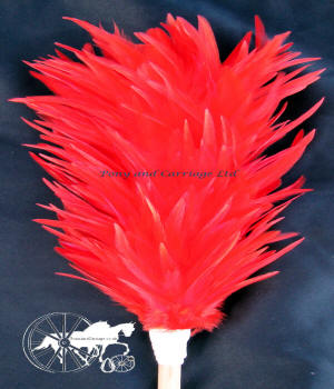 Red Feather Plume