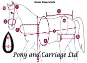 horse driving harness measurement diagram picture