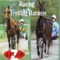 Zilco Racing and Trotting Harness
